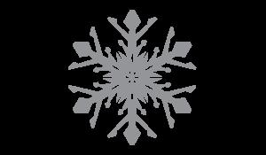 Logo/Identity Icon